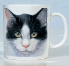 Tasse Katze (Black and White Cats)
